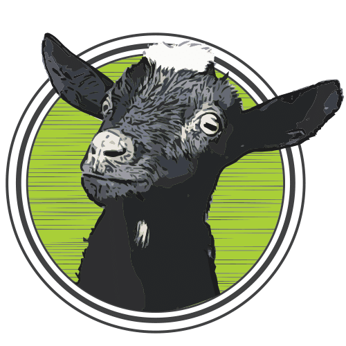 Have Ya Herd? – Goat Yoga